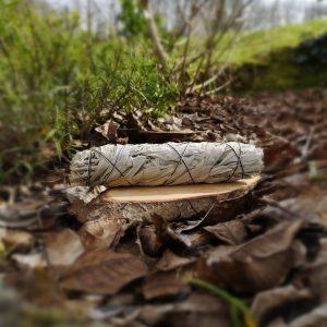 Bâton de Sauge Blanche large Terre de l'Aigle Les Cheveux de Vénus