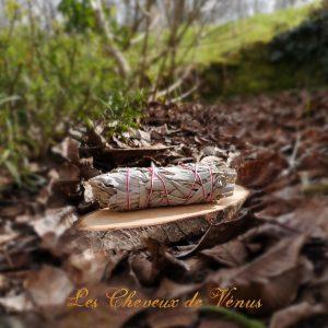 Bâton de Sauge Blanche médium Terre de l'Aigle Les Cheveux de Vénus